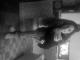 sabrina_dutra talkd avatar