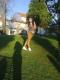 rafaela_costa talkd avatar