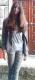 SuCunha talkd avatar