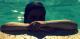 barbaracastro07 talkd avatar