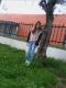 Sou_feia talkd avatar